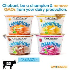 Chobani, be a champion and remove GMOs from your dairy production! Take action! http://gmoinside.org/take-action