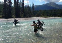 How to Prepare For Wildlife Encounters on Your Mountain Bike Trips  #mountainbiking #mtb