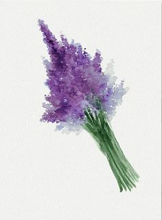 Lavender water color...