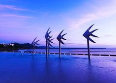 My serenity  Cairns Queensland  #cairns #queensland #paradise #greatbarrierreef #crystalclear #serenity #lush #tropical #summerburst #summervibes #positivevibes #lagoon #nightswimming #fnq #theonlywayisup #specialplace #igers #instadaily by stevennlewis http://ift.tt/1UokkV2