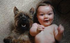 Les chiens et les enfants (même les bébés), c'est une histoire d'amour et d'amitié qui n'est pas prête de s'éteindre. Ces 35 photos sont là pour le prouver