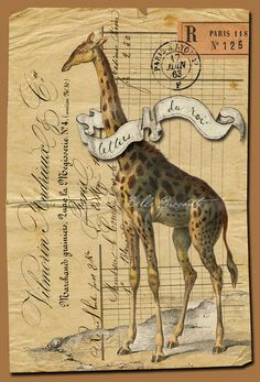 vintage letter with giraffe :/
