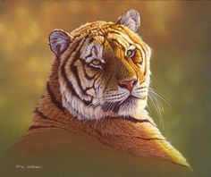 Tiger Portrait in oils Painting by Eric Wilson - Tiger Portrait in oils Fine Art Prints and Posters for Sale