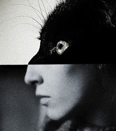 untitled by [brett walker]