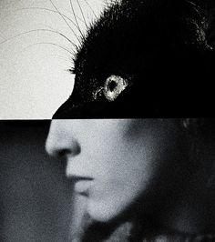 untitled by [brett walker]