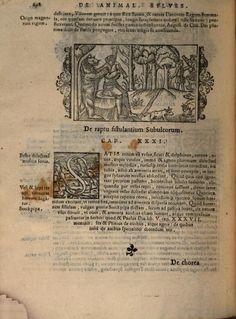 Historia de gentibus septentrionalibus, earumque diversis statibus ... - Olaus Magnus - Google Böcker