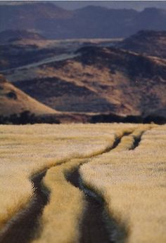 Road to Nowhere by Marius Coetzee