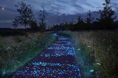 Studio Roosegaarde. Glow in the Dark path. Inspired by Vincent van Gogh's painting of a starry sky...