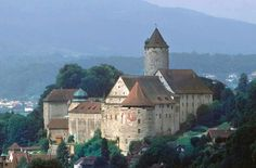 Porrentruy Castel Switzerland, Cathedral, Mansions, House Styles, Building, Travel, Alps, Germany, Viajes