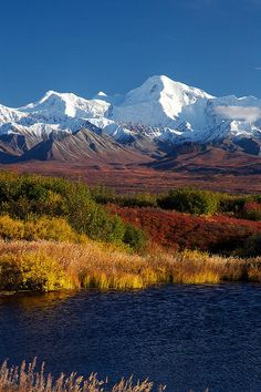 Denali National Park, Alaska - Science and Nature Beautiful World, Beautiful Places, Photos Voyages, Parcs, Amazing Nature, Belle Photo, Beautiful Landscapes, The Great Outdoors, Wonders Of The World