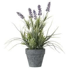 Bring the countryside inside with our lifelike faux English lavender plant. #oka #lavender #sale