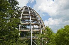 Pfingstferienprogramm Nationalpark Bayerischer Wald