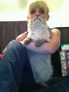 kitty mustache. It gets funnier the longer you look...