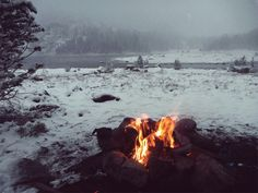 Spellbound In The Forest — bushsmarts:   Evening by the fire.