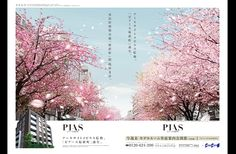 WORKS インサイト・ディレクション[不動産広告]広告制作 Pop Posters, Editorial Layout, Real Estate, Graphic Design, Plants, Editorial Design, Real Estates, Plant, Visual Communication