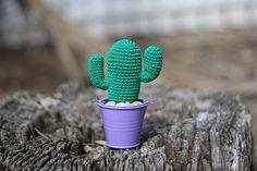 Häkeln Sie Saguaro Cactus angegossene Kakteen Pflanze in von TomToy