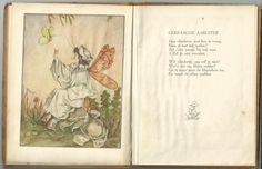 Donker, Nellie (tekst & illustraties) - De Paddenstoelen Elfjes