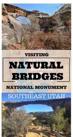 Natural Bridges National Monument is located in SE Utah by the four corners.  It is Utah's first national monument and the world's first international dark sky park.
