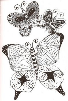more butterflies | Flickr - Photo Sharing!