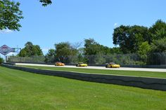 Corvette World Races