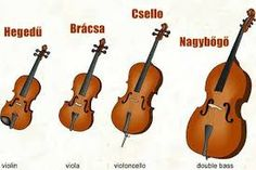 String Family Violin, Viola, Cello & Double Bass On all of the orchestral string instruments, the string is played by drawing a bow strung… Violin Lessons, Music Lessons, Cc Music, Percussion, Violin Family, Music And Movement, Music Composers, Elementary Music, Music Classroom