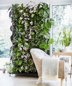 Beautiful Living Wall Indoor Decoration Ideas To Be A Fresh Home 01 Vertical Plant Wall, Plant Wall Diy, Indoor Plant Wall, Indoor Plants, Indoor Gardening, Living Room Plants, Living Room Green, House Plants, Wall Of Plants