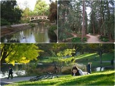 Check out the Arboretum on the UC Davis campus. It's the perfect place to relax in the midst of tall redwood trees. Have a picnic, read a book, or just enjoy the scenery.