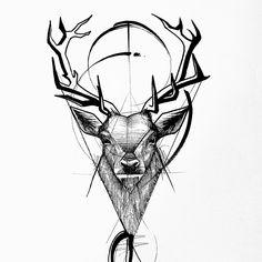 Deer - Frank Carrilho