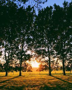 #latergram #sunset #vsco #vscocam #iphonex #iphoneography