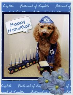 Hanukkah dog 2 Hanukkah card  (Dyan Cross -  http://pinterest.com/dyancross
