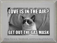 Love is in the air?  Get out the gas mask…