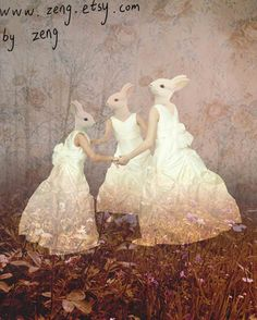 fairy rabbit girls (zeng)  Wrong; not told that it's faux pas to leave the house in their slips.