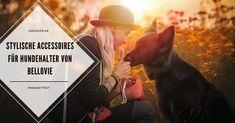 LokisLife | Hundeblog LokisLife | Hundeblog - Ein deutschsprachiger Blog über das Leben mit einem Hund aus dem Auslandstierschutz. Leser finden hier unter anderem DIYs, Literaturtipps, Produkttests, Empfehlungen und Tipps zur Hundeerziehung. [Werbung] Wer nicht nur praktisch, sondern auch stylish mit seinem Hund unterwegs sein möchte, sollte einen Blick auf die Produkte von Bellovie werfen. Der Beitrag Produkttest: Stylische Accessoires für Hundehalter von Bellovie erschien zuerst auf… Poster, Blog, Dog Training Tips, Animal Rescue, Literature, Hang In There, Animals, Movie Posters