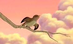 SERBĂRI ŞCOLARE: PRIVIGHETOAREA Bird, Animals, Animales, Animaux, Birds, Animal, Animais