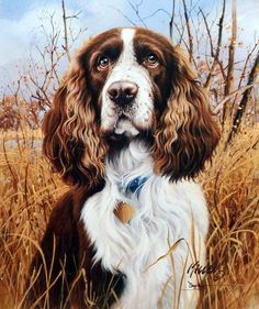 James Killen That's My Dog Too-Springer Spaniel-Signed
