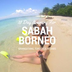 10 Day Itinerary for Sabah Borneo – Orangutans, Turtles and Chicken Anus Kebabs