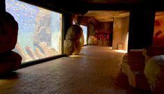 Korytarz akwarium betonowy chodnik skały