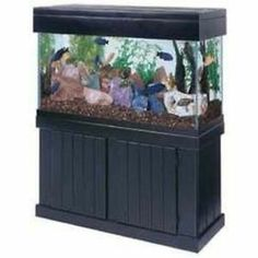 90 Gallon Fish Aquarium Tank, Stand, Canopy, Sump, Filter And More