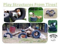 Need a play structure?  Try tires for added fun!  #Goats #Play