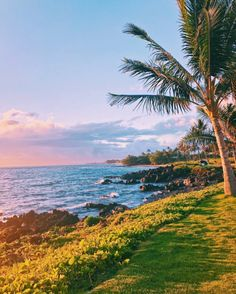 The Ultimate Guide to Wailea — Do as Dreamers Do Trip To Maui, Hawaii Vacation, Hawaii Travel Guide, The Dreamers, North America, Golf Courses, Beautiful Places, Ocean, Beach