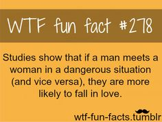 WTF Fun Facts is updated daily with interesting & funny random facts. We post about health, celebs/people, places, animals, history information and much more. New facts all day - every day! Wow Facts, True Facts, Funny Facts, Weird Facts, Funny Quotes, Random Facts, Crazy Facts, Cool Fun Facts, Random Stuff