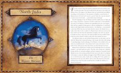 "Linda S. Wingerter illustration for ""Magic Hoofbeats"". North India, Illustrator, Magic, American, Cover, Art, Craft Art, Illustrators, Slipcovers"
