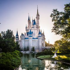 Exquisite fairy tale moment during a portrait session in Magic Kingdom