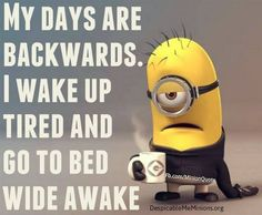 Lol Minions pics of the hour PM, Wednesday September 2015 PDT) - 10 pics - Minion Quotes Minions Images, Funny Minion Pictures, Minions Love, Bad Minion, Funny Pics, Minions Pics, Funny Quotes, Funny Memes, Hilarious