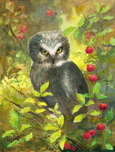 'Owl' by Ray Cole
