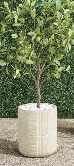 Add a rustic element to your space with handcrafted, ribbed planters. Fashioned of durable, all-weather materials with a drain hole at the bottom for ease of use. Cleaning Wipes, This Is Us, Planters, Backyard, Weather, Rustic, Shapes, Garden, Handmade