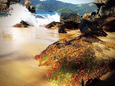 Ilha Grande, Angra dos Reis (RJ), Brazil