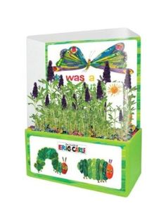 Amazon.com: Dunecraft The Very Hungry Caterpillar Butterfly Garden Kit: Office Products