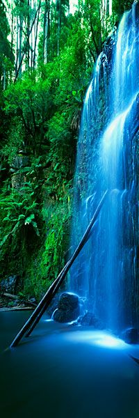 Nature's Veil, Vic|The veil-like Beauchamp Falls, in Victoria´s Otway Ranges, cascade from the surrounding forest onto an ethereal valley floor.