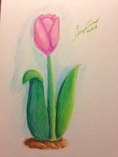 Pastel Tulip